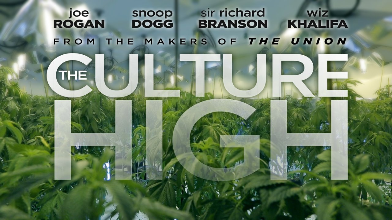 culture high documentary free